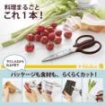 食洗機対応 分解できるキッチンばさみ フィットカットカーブ 持ちやすくて使いやすいと評判