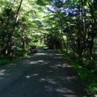 『矢筈ケ山(1358.6m) July 17,2011』の画像