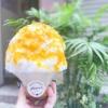 【三宮・元町】あの野菜を使ったかき氷が激旨! ~Specialty Pumpkin Zucca