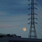 『8月3日(月)は天文現象の準当たり日~MILTOL200mm作例有【追記】 2020/08/03』の画像