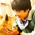 ひまわりと子犬の7日間 無料動画
