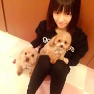 AKB島崎遥香がファンと犬相手で態度が違い過ぎると話題にwwwwww【画像あり】 アイドルファンマスター