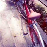 『自転車の名前はチャーリー』の画像
