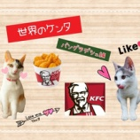 『【世界のケンタ】を食べてみよう!【バングラデシュ編】』の画像