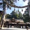 2月に奈良県 桜井~天理まで山の辺の道を歩いた話 池のヌシと思われるガマガエルに遭遇!