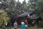 台風21号が過ぎ去った直後の交野市の状況〜市内各所で停電や倒木や家屋の損傷など〜