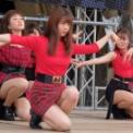 東京大学第92回五月祭2019 その23(STEP)