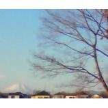 『晴天なれど風強し』の画像