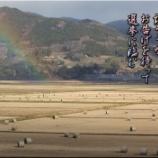 『虹のお告げ』の画像