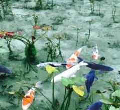 春・夏の「モネの池」(岐阜県関市)へマイカーで行く人は必見!これは都会では味わえないですね。