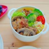 『鶏の生姜焼き弁当とラーパーツァイ(中華風白菜の甘酢漬け)』の画像