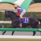 『バアゼルリバーが抜き打ちで引退、愛知県で乗馬に』の画像