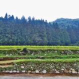 『下松の新里山レストラン(1)』の画像