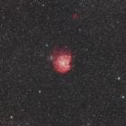 『FSQ-130EDによるモンキーフェイス星雲(NGC2174)』の画像