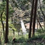 『「塩沢冠水橋」~リアルでコケかけました スニーカー推奨~』の画像