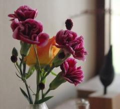 ワンコインから楽しめる、季節を運ぶ花のある暮らし