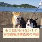 東京法律事務所blog