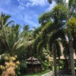 『Ashtanga Yoga , Raw Food & Nature Retreat in Big Island Hawaii 2016申し込み受付中です。』の画像