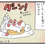 『パンケーキとはこういう食べ物だと思ってる』の画像