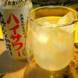 『ハイサワーレモンをそのまま飲むと超上質なレモン炭酸水!?焼酎との相性が1番かと思いきや飲み屋のプロもやっていた意外な飲み方』の画像