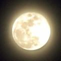 【3/29 満月 龍神メッセージ】「宇宙人」になるチャンス!?宇宙人になって、「岩戸開き」を起こしていこう!!