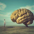 『脳「人間の眼には盲点というものがある」ぼく「ふむ」』の画像