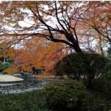 『小石川後楽園』の画像