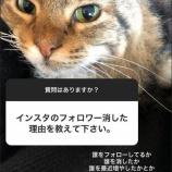 『【元乃木坂46】松井玲奈、インスタのフォロワーを全消去!『誰をフォローしてるか、誰を消した、増やしたをチェックする人がいるので消しました。』』の画像