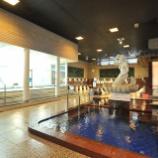 『「東京健康ランドまねきの湯」(東京・船堀)にて、コシダカHDの株主優待券を使ってみた』の画像