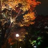 『戸田広報番組「ふれあい戸田」の11月番組「地域に開かれた保育園 保育園地域交流事業」が公開されています』の画像