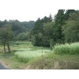 『稲刈りと蔵の見学 —安全農産供給センター—』の画像