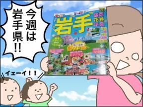我が家のGo Toキャンペーン〜岩手県編〜