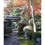 『秋の彩』の画像