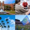 【トレーナー留学】フロリダ大学・大学院視察ツアー2019の募集を開始しました!