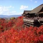 京都って怖くね?