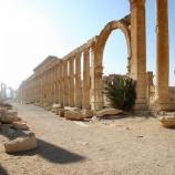 『行った気になる世界遺産 パルミラ遺跡 列柱道路』の画像