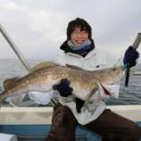 『2月7日 釣果 スロージギング マダラMAX8キロ 笑いの絶えない釣行でした(^O^)/』の画像