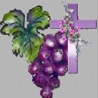 『最初の律法の成り立ち、神の心と愛。隣人の関わりを示すために。』の画像