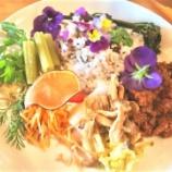 『食用花エディブルフラワーの効用』の画像