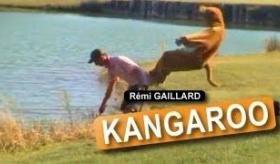 【レミ・ガイヤール】  町で カンガルー男が大暴れ。  海外の反応