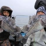 『2月8日 釣果 スロージギング』の画像