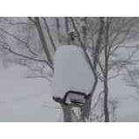 『オフピステチャレンジ1 今日は湯殿山スキー場にて。1』の画像