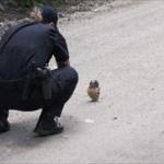 警察「すいませ~ん!危ないもの持ってないか確認させてください!」ワイ「(お、きたな!)」