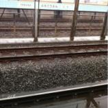 『雪降る戸田市』の画像