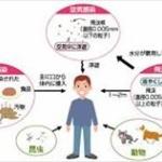 【画像】感染症マニアの俺が危険なウイルス・細菌・真菌・原虫を紹介するよ!!!!!