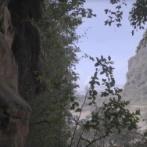 人類最古か…インドネシアの洞窟に4万4000年前の壁画、定説を覆す発見