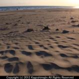 『Dune』の画像