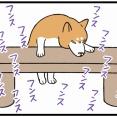 公園のベンチに「何かの気配」を敏感に嗅ぎ取った柴犬