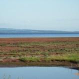 『北海道旅行記 3 見よ!湖は赤く燃えているー』の画像