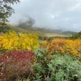 『秋の高原』の画像